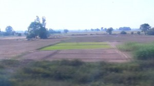 View from the train window